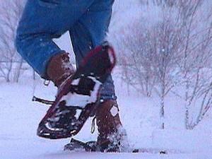 Yakima snowshoes promotion